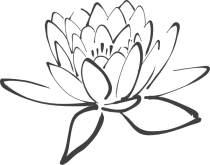lotus-in-dark-gray-hi