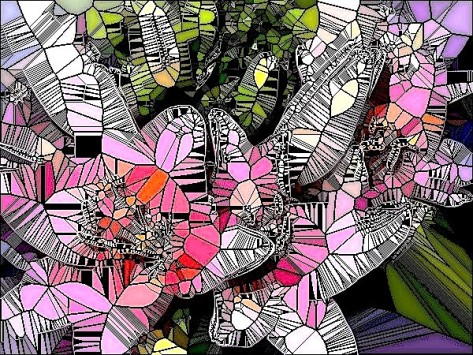 Doon PinkFlowers